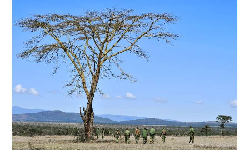 Taking the hi-tech fight to poachers will help to facilitate the work of game rangers such as those on this foot patrol, who be