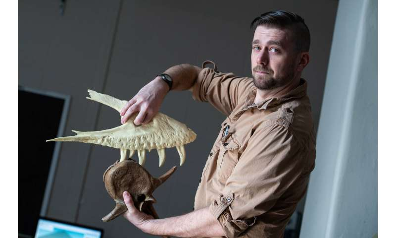 Teenage T. rex was already chomping on prey, new UW Oshkosh research shows
