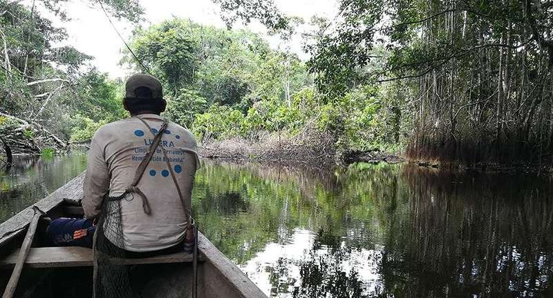 The cultural significance of carbon-storing peatlands to rural communities