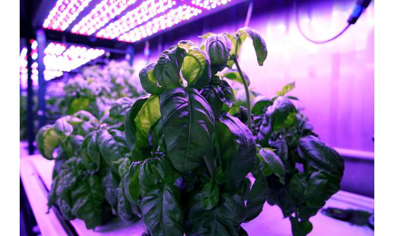 The future of agriculture is computerized