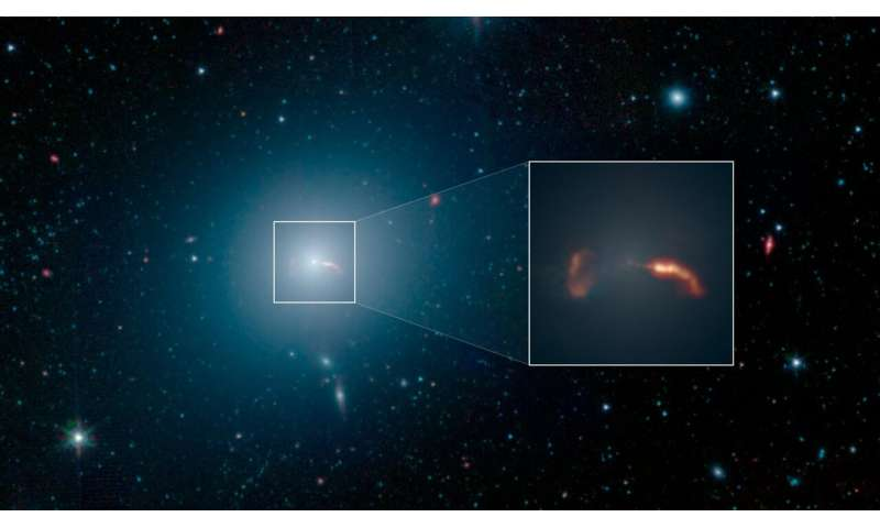 The giant galaxy around the giant black hole