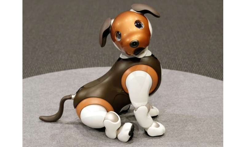 "The latest aibo model, which can also display ""emotions"", was released in January last year and sales hit 20,000 in th"