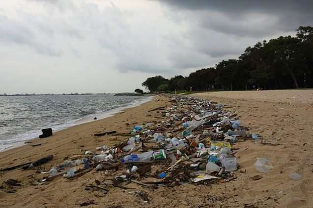 The ocean garbage patch is tiny compared to our carbon footprint