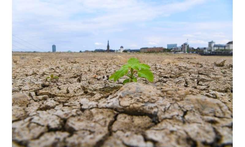 Heatwaves longer, more deadly even in a 2C world