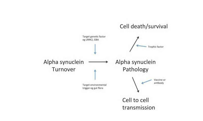 The search for the holy grail: Promising strategies for slowing, stopping, or reversing Parkinson's disease