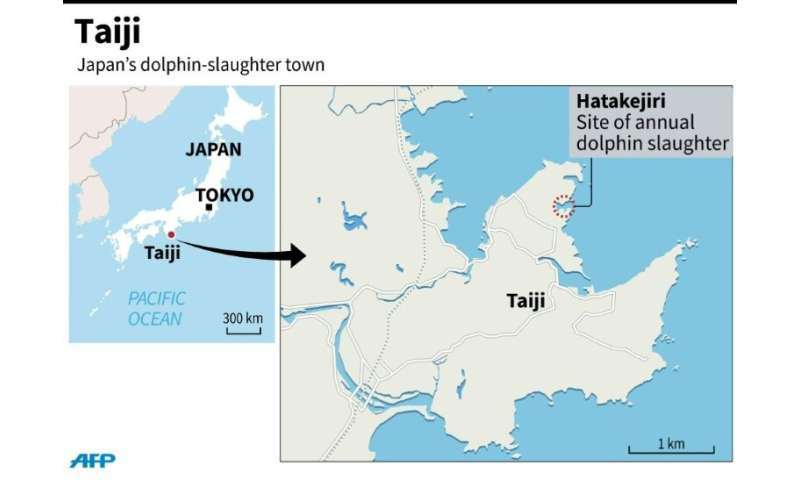 The town of Taiji in Japan where a three-year dolphin 'drive hunting' permit was granted