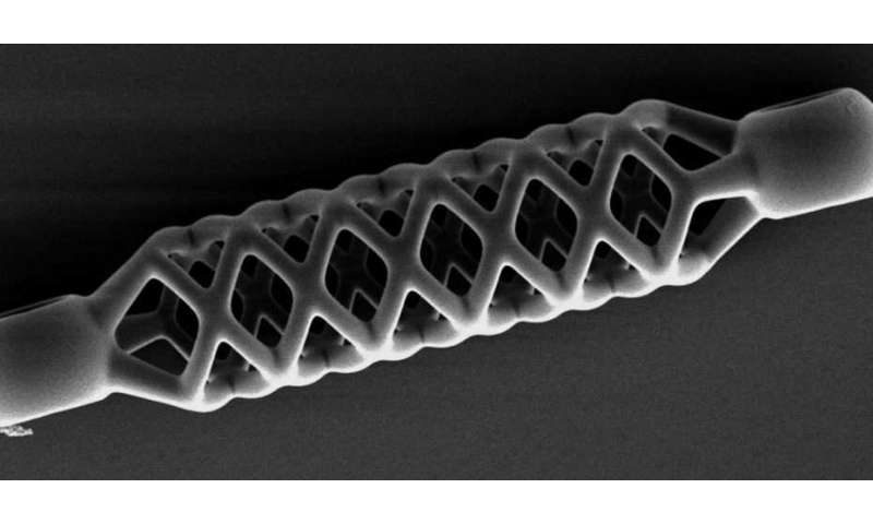The world's smallest stent