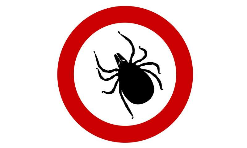 Likelihood Of Tick Bite To Cause Red Meat Allergy Could Be Higher
