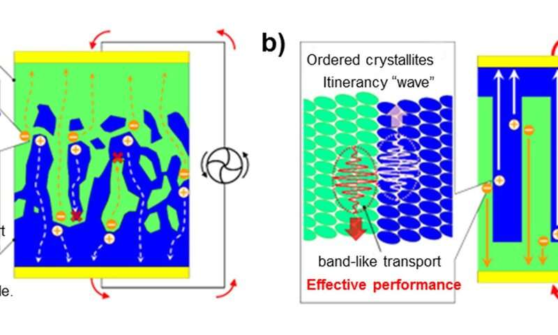 Tracking charge carriers in the molecular crystal at organic pn junction