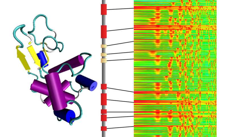 By turning molecular structures into sounds, researchers gain insight into protein structures and create new variations