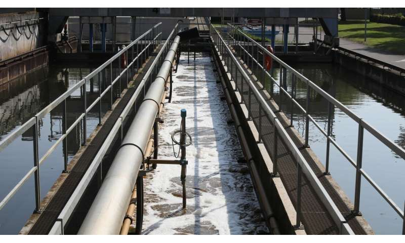Turning wastewater sludge into energy and mineral salts