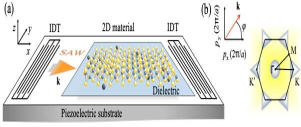 Unconventional phenomena are triggered by acoustic waves in 2D materials