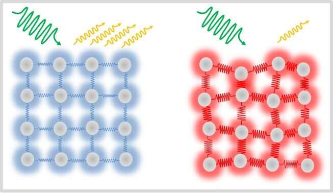 Utrafast magnetism: Electron-phonon interactions examined at BESSY II