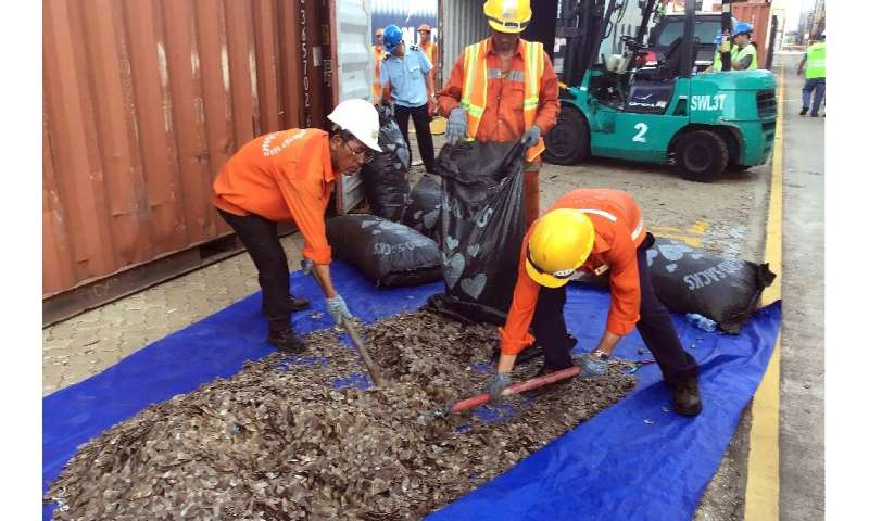 Vietnam seizes 5 tonnes of pangolin scales from Nigeria