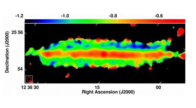 Warped diffusive radio halo detected around the galaxy NGC 4565