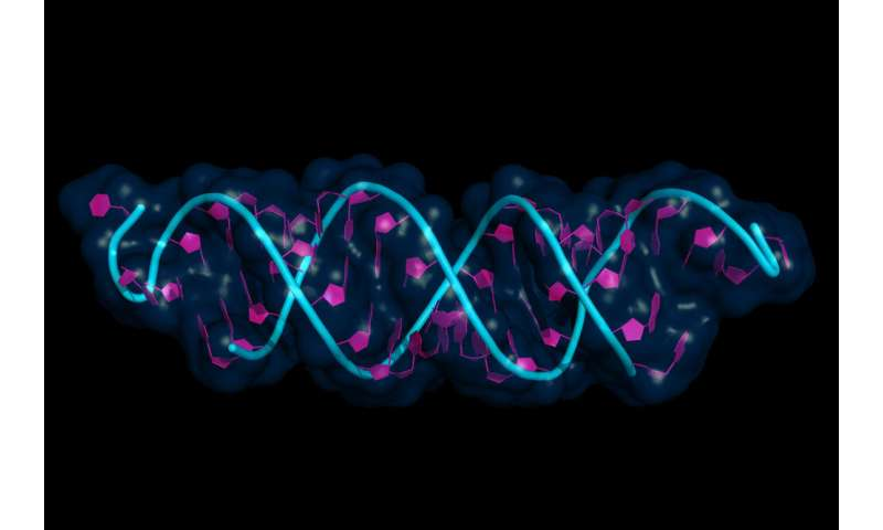 What impact does epigenetics have on our psychology?