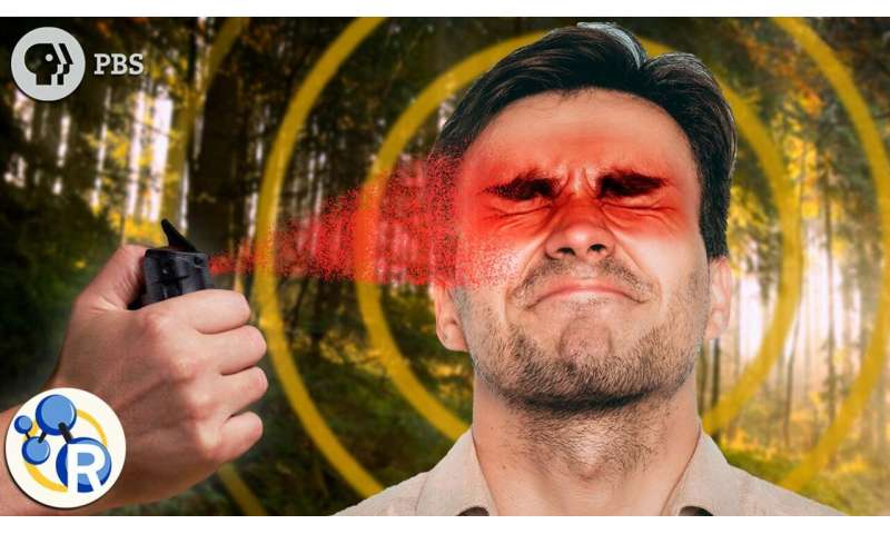 What is pepper spray? (video)