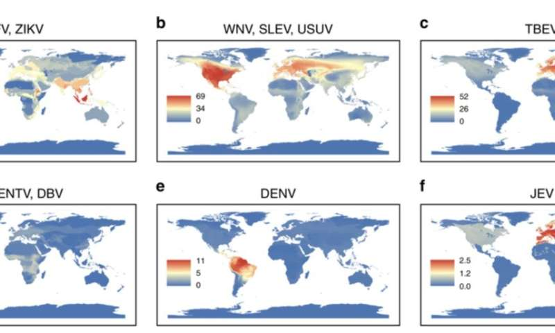 Where will the world's next Zika, West Nile or Dengue virus come from?
