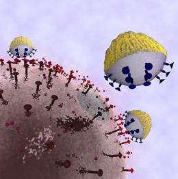 Engineers develop cancer-targeting nanoprobe sensors