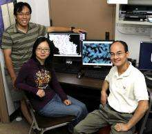 Iowa State, Ames Lab researchers identify structure that allows bacteria to resist drugs