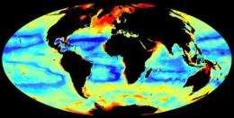 Understanding patterns of seafloor biomass