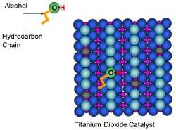 Scientists see carbon chains preferred locales on popular catalyst