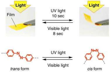 New photosensitive film converts light into kinetic energy, bends when irradiated