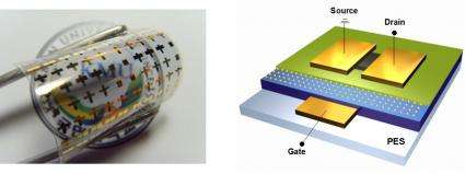 High reliability of flexible organic transistor memory looks promising for future electronics