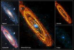 Andromeda in a new light