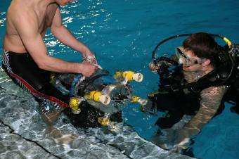 Researchers equip robot sub with sensory system inspired by blind fish