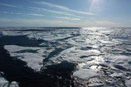 Ice-free Arctic Ocean may not be of much use in soaking up carbon dioxide: study