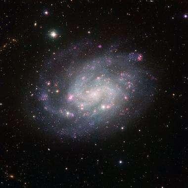 A nearby galactic exemplar
