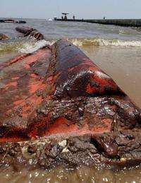 An oil coated containment boom is seen on the beach in Waveland, Mississippi