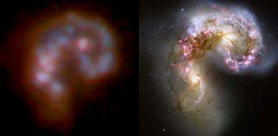 Bright galaxies like to stick together