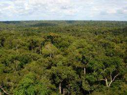 'Archeologists of the air' isolate pristine aerosol particles in the Amazon