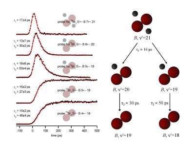 A simple quantum dynamics problem?