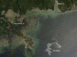 As Oil Spill Grows, So Does Need For Data On Health Effects