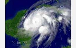 Birth of a Hurricane