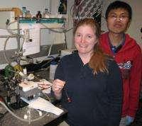Composite nanomaterials show promise for solar hydrogen generation