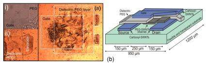 Researchers print field-effect transistors with nano-infused ink