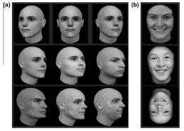 Ability to recognize faces peaks in the 30s