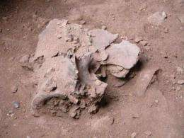 First clear evidence of feasting in early humans