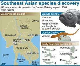 Graphic on newly discovered species in the Greater Mekong region