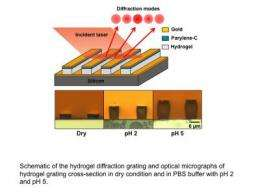 Hydrogels used to make precise new sensor