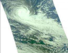Imani reaches cyclone status 'by the tail'
