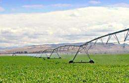 Irrigation's cooling effects may mask warming in some regions -- for now