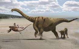 New 'thunder-thighs' dinosaur discovered