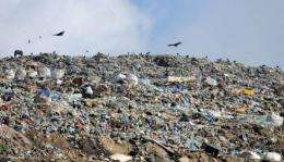 "Lucy Walker's film ""Waste Land"" follows the lives of rubbish pickers surviving on a Brazilian landfill"
