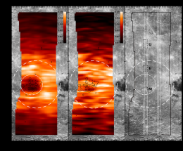 Magnetic anomalies shield the Moon