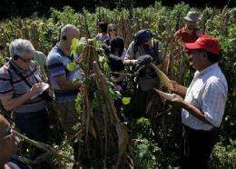Mayan village in Mexico impacted by climate change (AP)